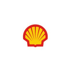 l-shell