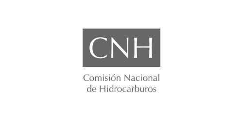 logo-act-rel-cnh