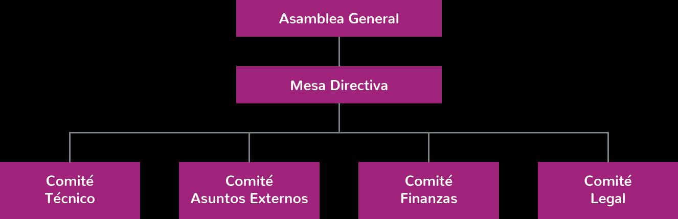 organigrama-c-2x