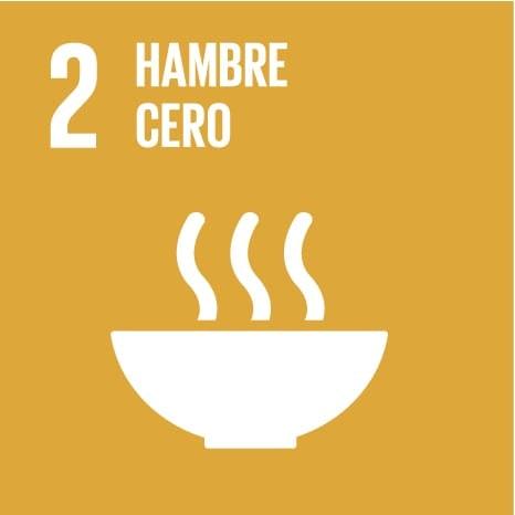 SDG Hambre cero
