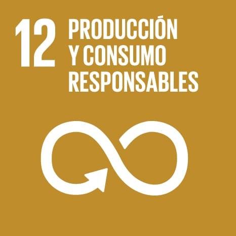 S_SDG_Icons-01-12-min