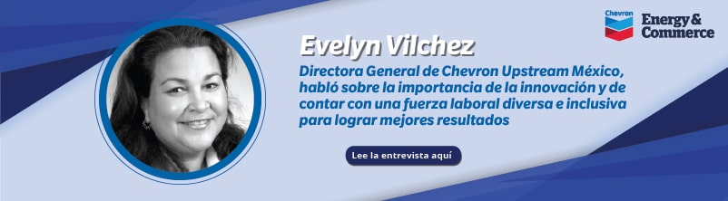 newsletter-agosto-evelyn-chevron