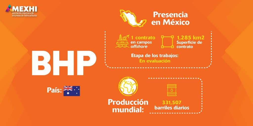 Ficha_Informativa_BHP