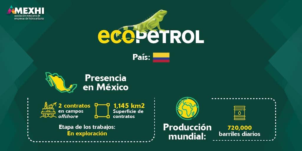 Ficha_Informativa_Ecopetrol