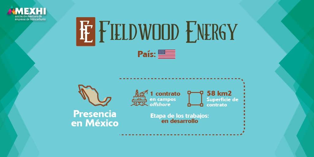 Ficha_Informativa_Fieldwood