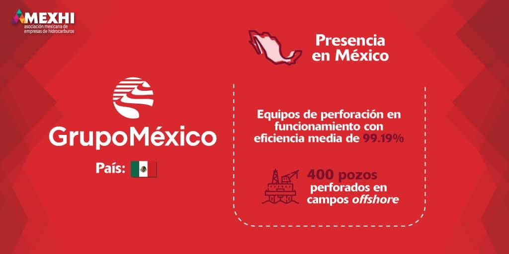 Ficha_Informativa_GMexico