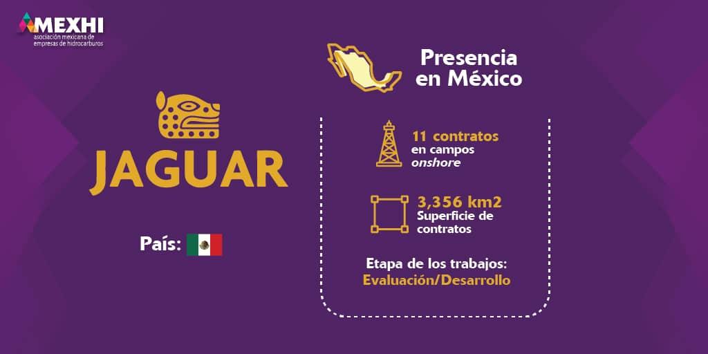 Ficha_Informativa_Jaguar