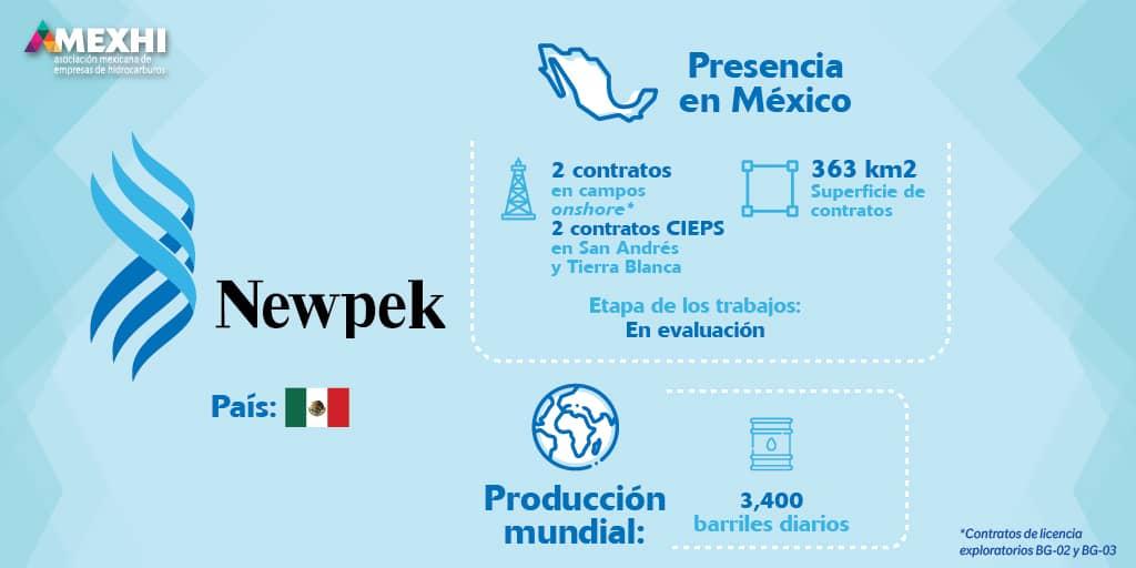 Ficha_Informativa_Newpek