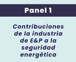 Panel_1